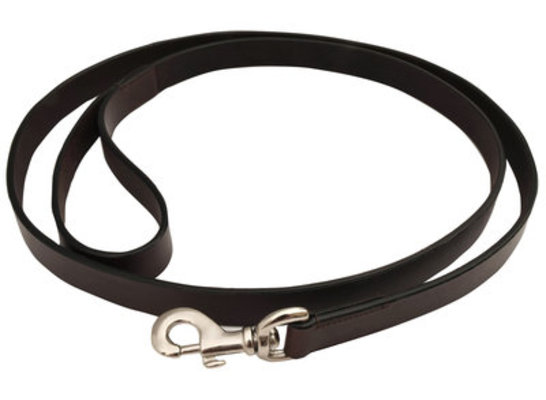 Jeffers Premium Flat Leather Leash, 6'