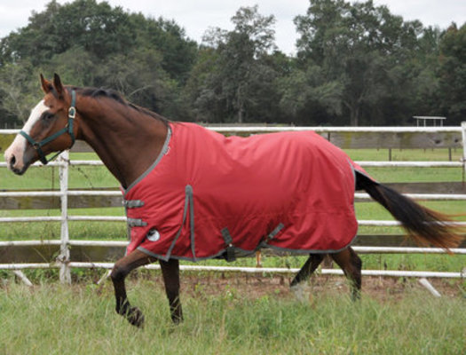 Jeffers Romper Stomper <br>1680D Turnout Sheet, Garnet