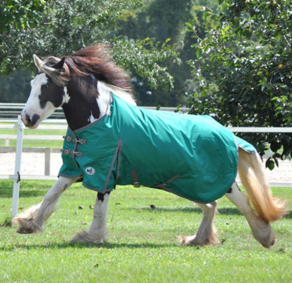 Jeffers 1680D Romper Stomper Turnout Horse Blanket,180g