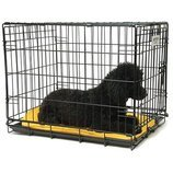 Jeffers Single Door Fold & Go Crate