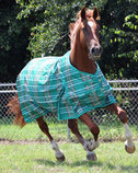 Jeffers Solaris 1200D Turnout Horse Blanket, 240g