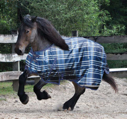 Jeffers Solaris 1200D Draft Turnout Blanket, Sapphire Plaid