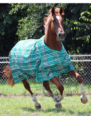 Jeffers Solaris 1200D Draft Horse Blanket, 240g