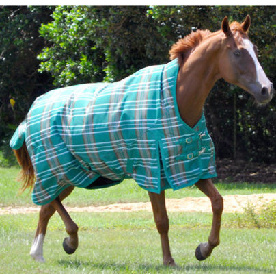 Jeffers Solaris 1200D Extended Neck Horse Blanket, 240g