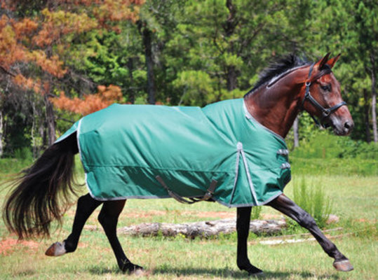 Jeffers® Solaris 1200D Light Turnout Blanket, Hunter