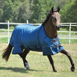 Jeffers Supreme Plus 1680D Teal Horse Blanket, 240g