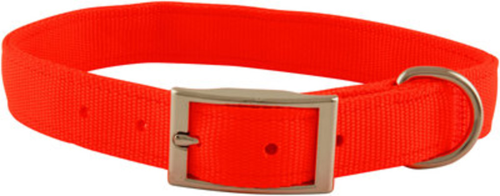 "Jeffers 1"" Wide Dog Collar, 16""L"