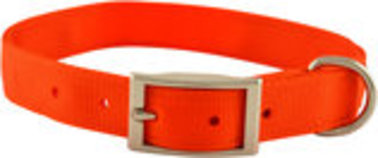 "Jeffers 1"" Wide Collar, 16""L"