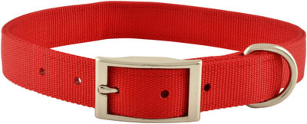 "Jeffers 1"" Wide Dog Collars, 20""L"