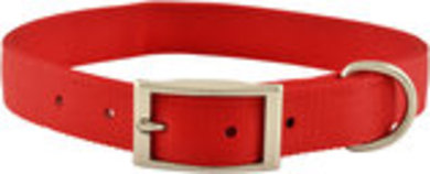 "Jeffers 1"" Nylon Dog Collar, 22""L"