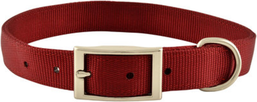 "Jeffers 1"" Wide Dog Collar, 22""L"