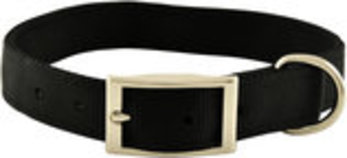 "Jeffers 1"" Wide Dog Collar, 26""L"