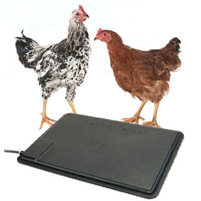 Thermo-Chicken Heating Pad