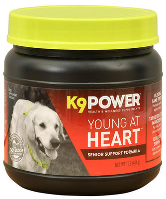 K9Power Young at Heart