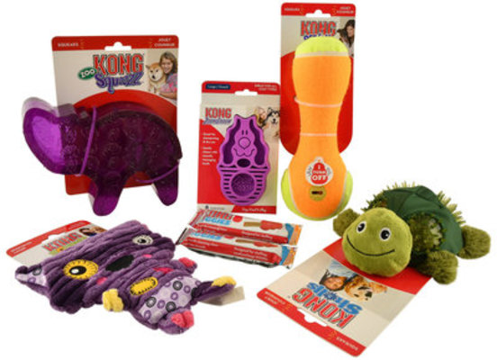 Kong Box Dog Gift Set (Jeffers Exclusive)