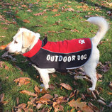 All Weather Dog Jacket, Medium