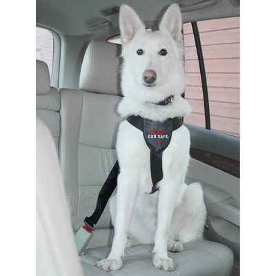 Large Clix Car Safe Harness