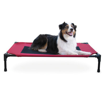 Large Elevated Pet Bed