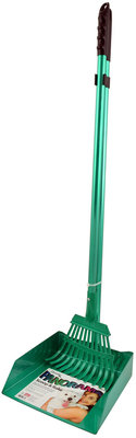 Panorama Rake - Large, Green