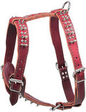 Latigo Leather Large Harnesses, Spikes & Studs