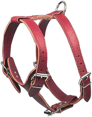 Latigo Leather Harnesses, Medium Plain