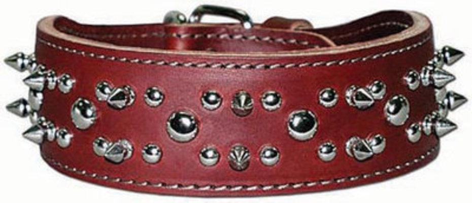 Latigo Spike & Stud Collar, 21""
