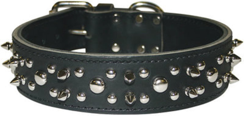 Latigo Spike & Stud Collar, 23""