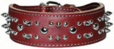 Latigo Spike & Stud Collar, 25""