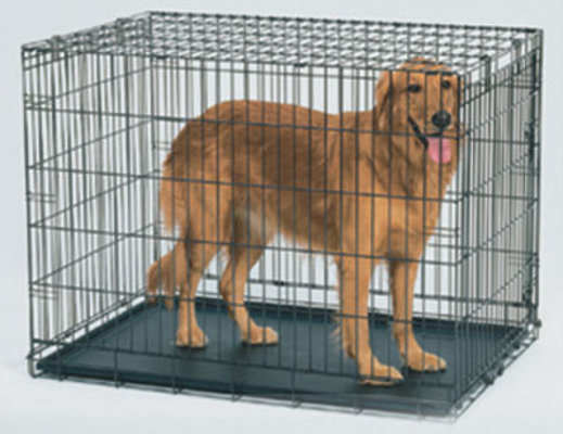 Life Stages Fold & Carry Crate (Model# 1624)
