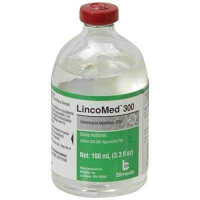 Lincomycin Injectable, 100 mL (300 mg/mL)