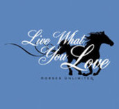 """Live What You Love"" Tee"