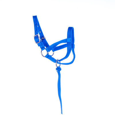 Jeffers Nylon Llama Halter, adult