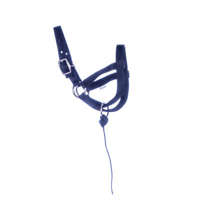 Jeffers Nylon Llama Halter, yearling