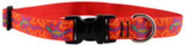 "Lupine 1""W Nylon Large Dog Collars (16""-28""L)"