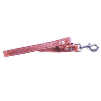"Luxe Leather Dog Leash,  3/4"" x 4'"