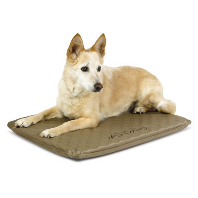 "Medium Outdoor Heated Dog Bed, 40 watts (19"" x 24"")"