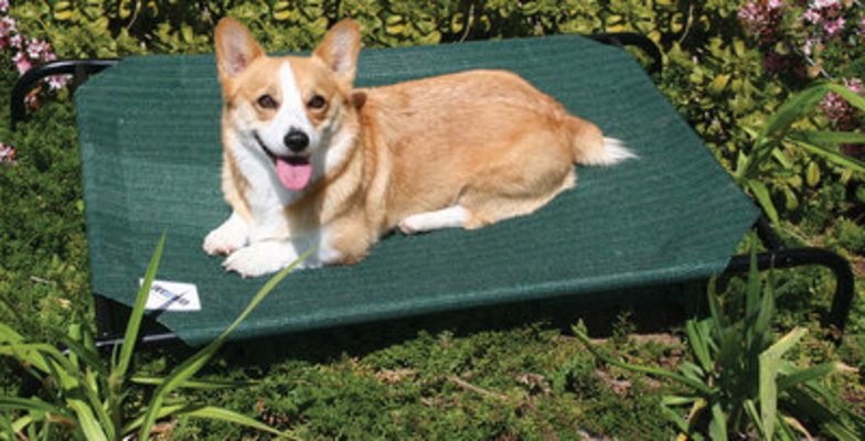 Coolaroo Pet Bed