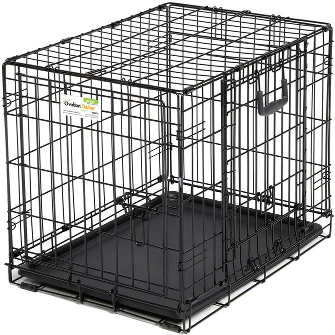 Midwest ovation double door trainer pet crate jeffers pet for Double door with dog door