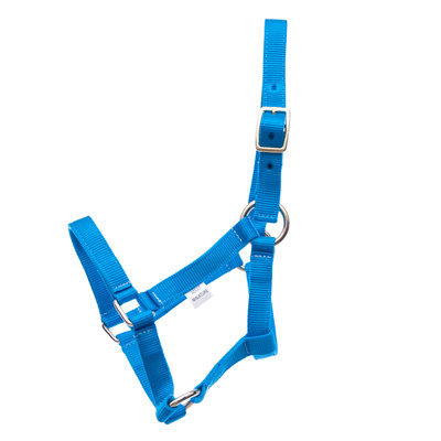 Jeffers Miniature Horse Halter, (under 200 lb)