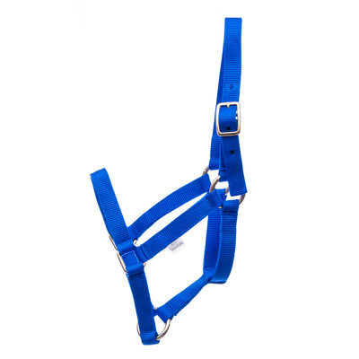 Jeffers Adult Miniature Horse Halter (under 300 lb)