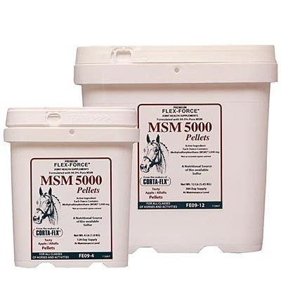 Flex Force MSM 5000 Pellets