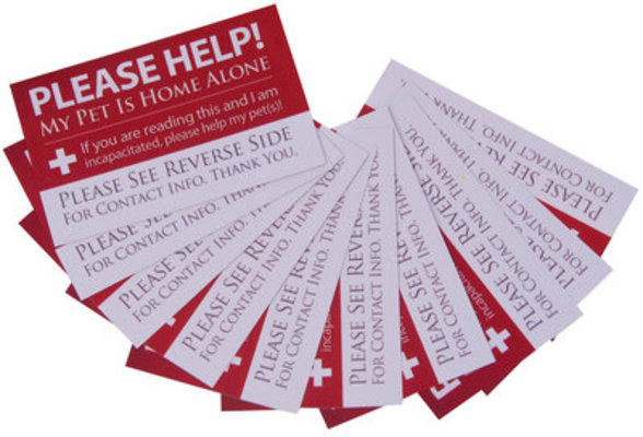 10-pack Home Alone Cards