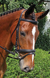 "Nunn Finer ""Brentina"" Dressage Bridle"