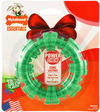 Nylabone Power Chew Textured Ring, Wintergreen