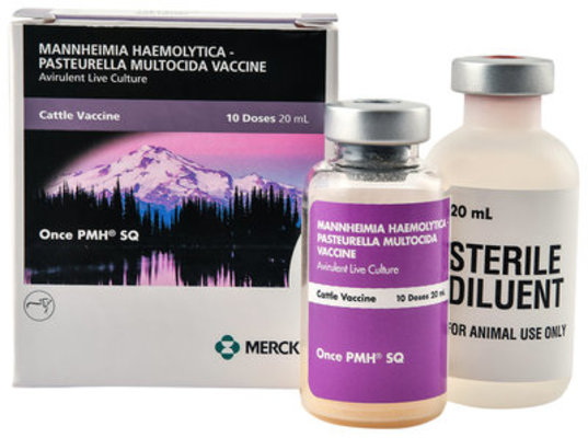 Once PMH SQ, 10 dose - 10 Dose Vial