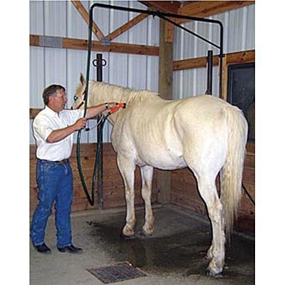 Over The Top Wash Unit for Horses