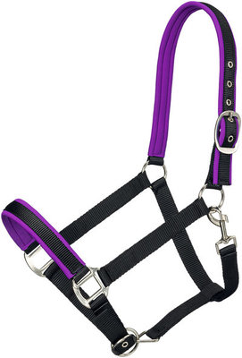 Padded Nylon Horse Halter, Full