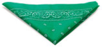 Paisley Design Dog Bandanas