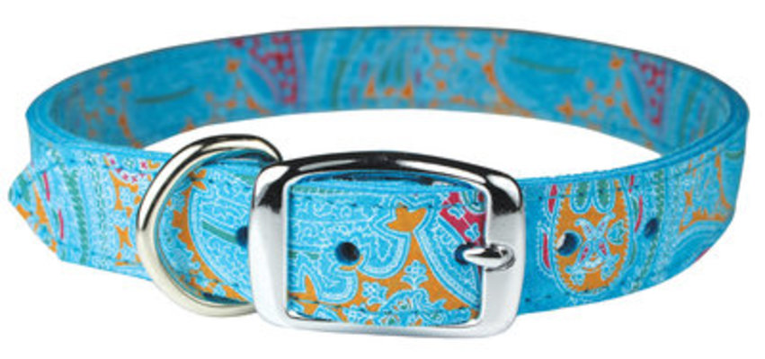 """The Paisley Collection Collar, 22"""" - 26"""""""