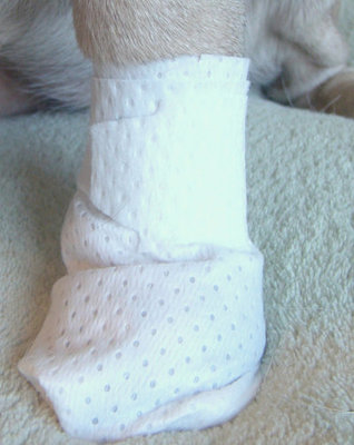 PawFlex™ MediMitt Disposable Bandages